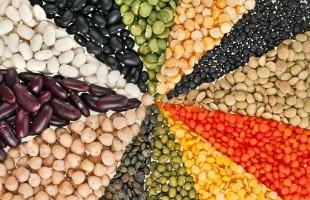 Dieta vegetariana e vegana: come assicurarsi tutte le proteine necessarie