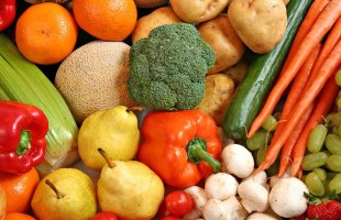 """Svolta in Parlamento per """"l'alimentazione verde"""""""