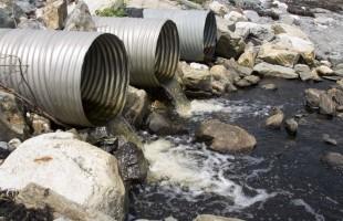 PFAS: inquinanti ambientali persistenti e distruttori endocrini